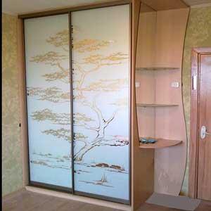 Корпусный шкаф-купе на заказ с стеклянной и зеркальной дверью